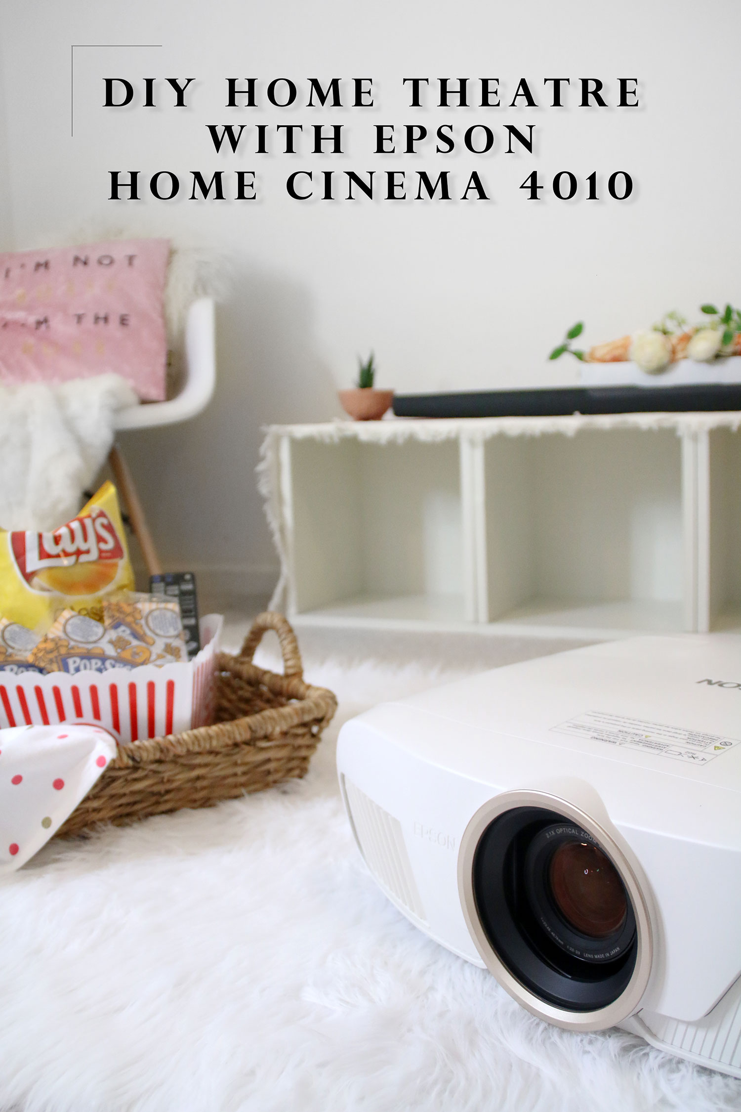 Epson Home Cinema 4010
