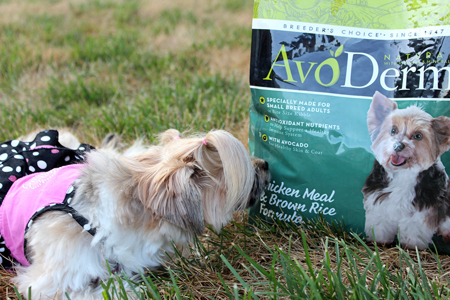 Avoderm Breeder's Choice Pet Foods