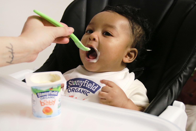 Stonyfield YoBaby Yogurt