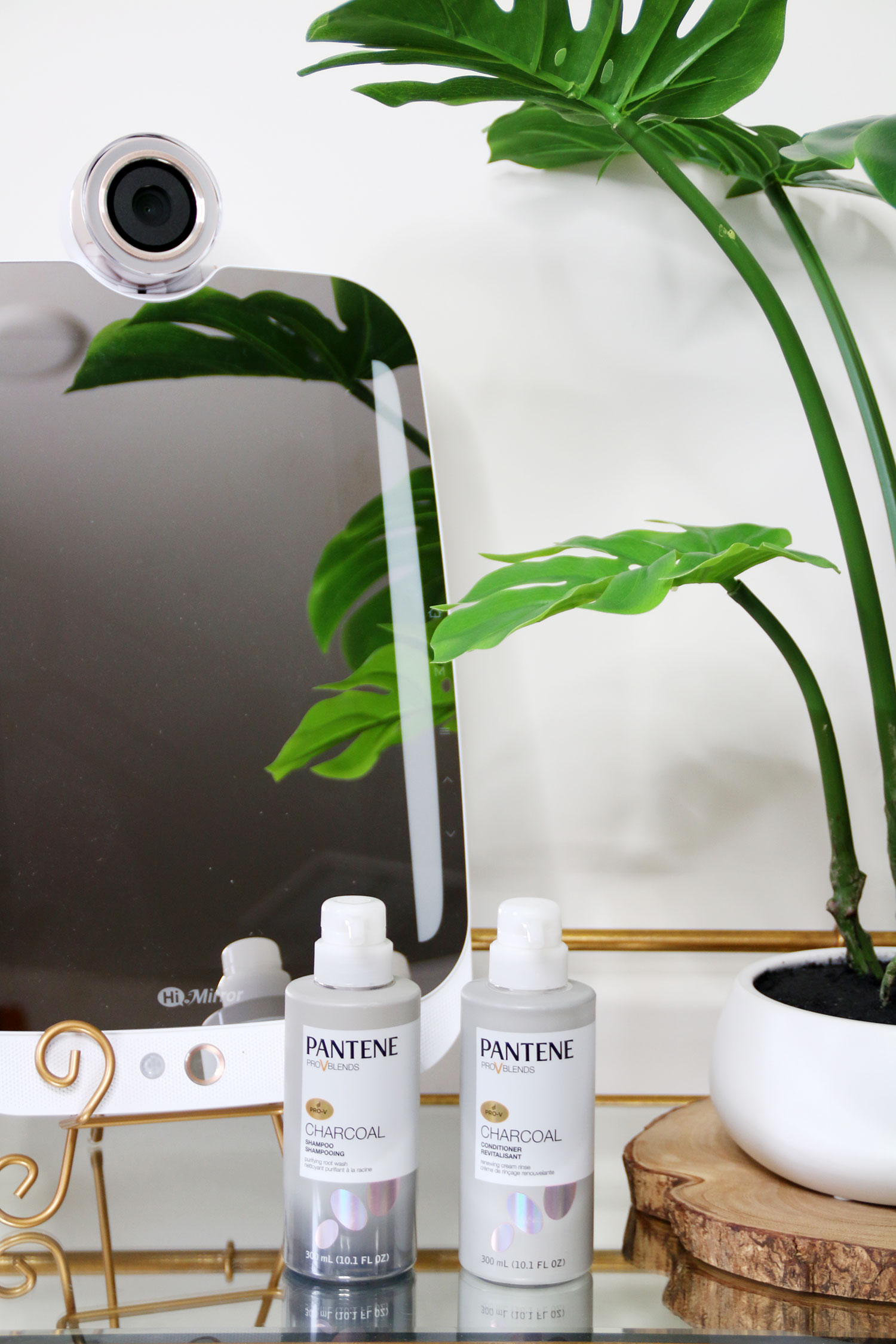 Pantene Pro-V Blends Charcoal Collection