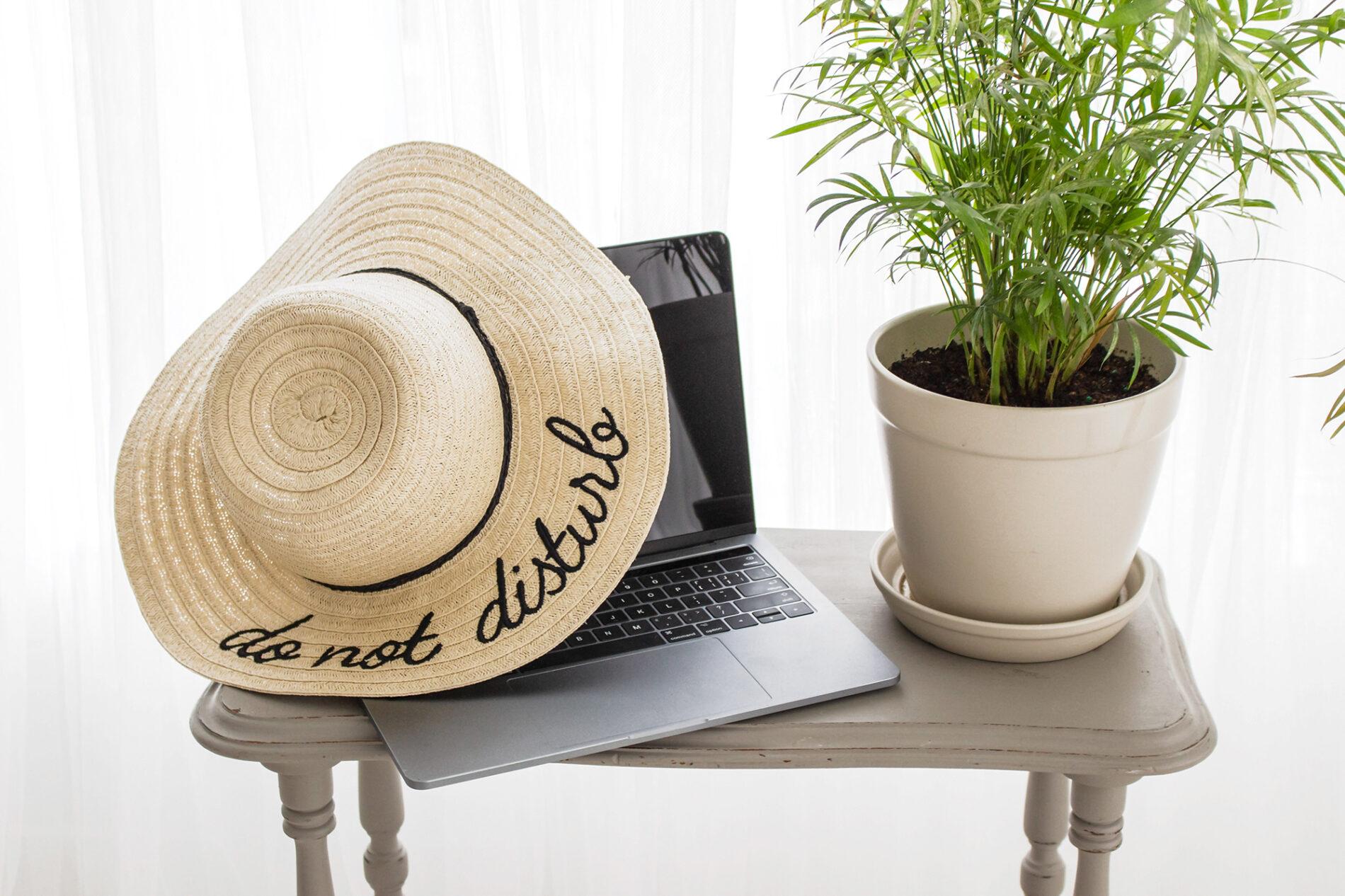 plants, garden, gardening, decor