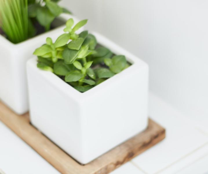 Home Improvement: Ideas That Won't Break The Bank