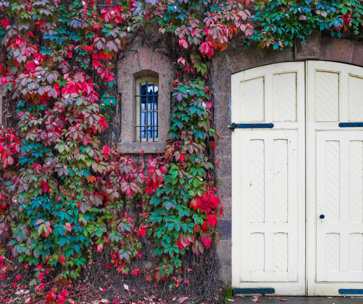 6 Super-Effective Ways to Increase Your Home's Value